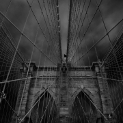 Dark Cage, Brooklyn Bridge